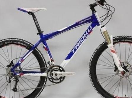 山地自行车品牌排行价格_山地自行车品牌