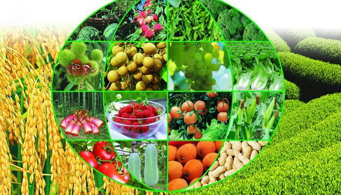 农业种植网站大全-农业网