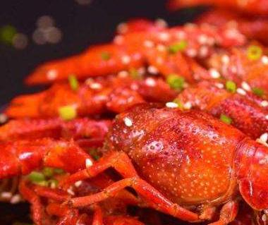 【堕落小龙虾加盟条件】堕落小龙虾
