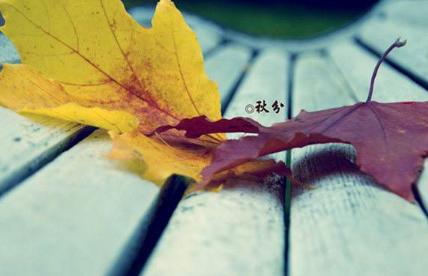 【秋分是什么意思】秋分的习俗