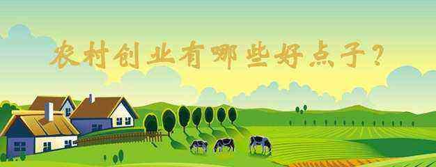 中国未来几年|未来几年,最新适合农村的五个创业项目