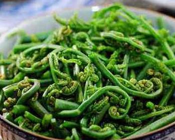 蕨菜吃了会致癌吗|吃蕨菜会致癌吗