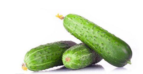 水果黄瓜是转基因吗