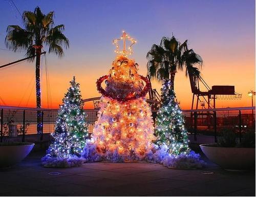 圣诞�谌ツ睦锿嫒�篇